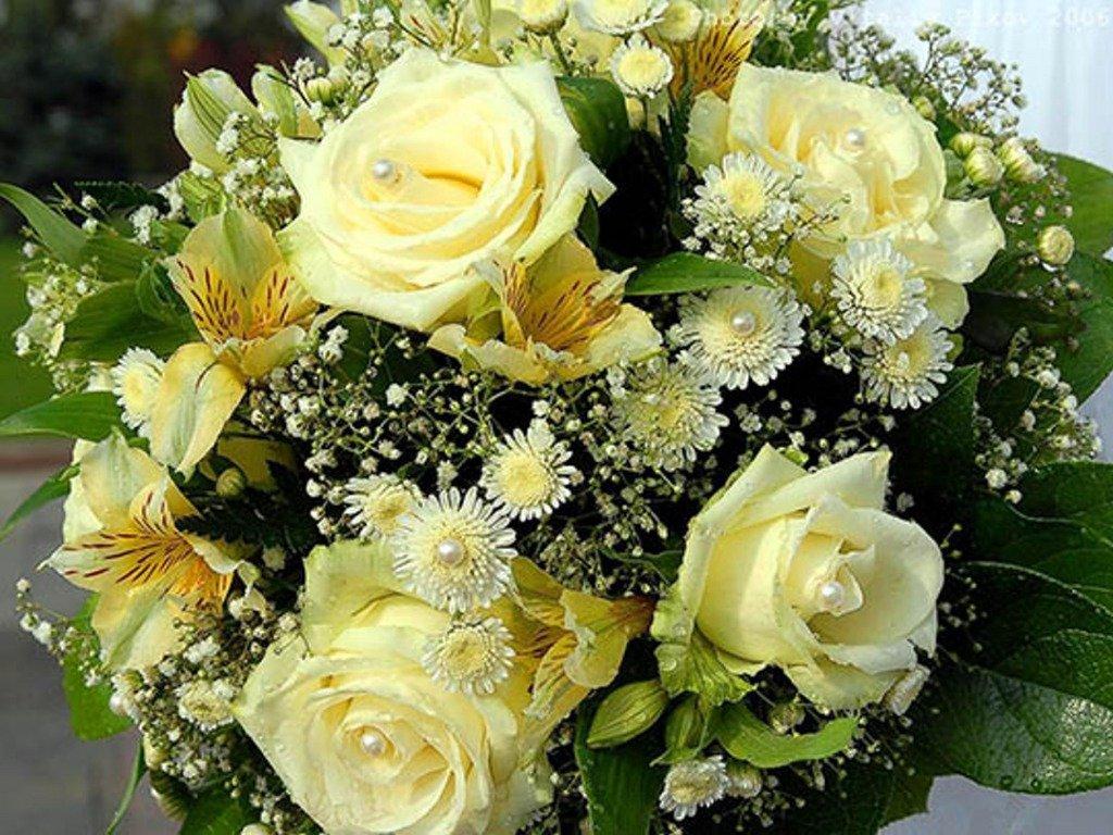Цветы красивые блестящие картинки 5