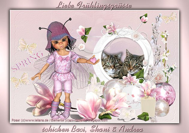 An den Beitrag angehängtes Bild: http://img26.dreamies.de/img/780/b/bebreuo8j6f.jpg